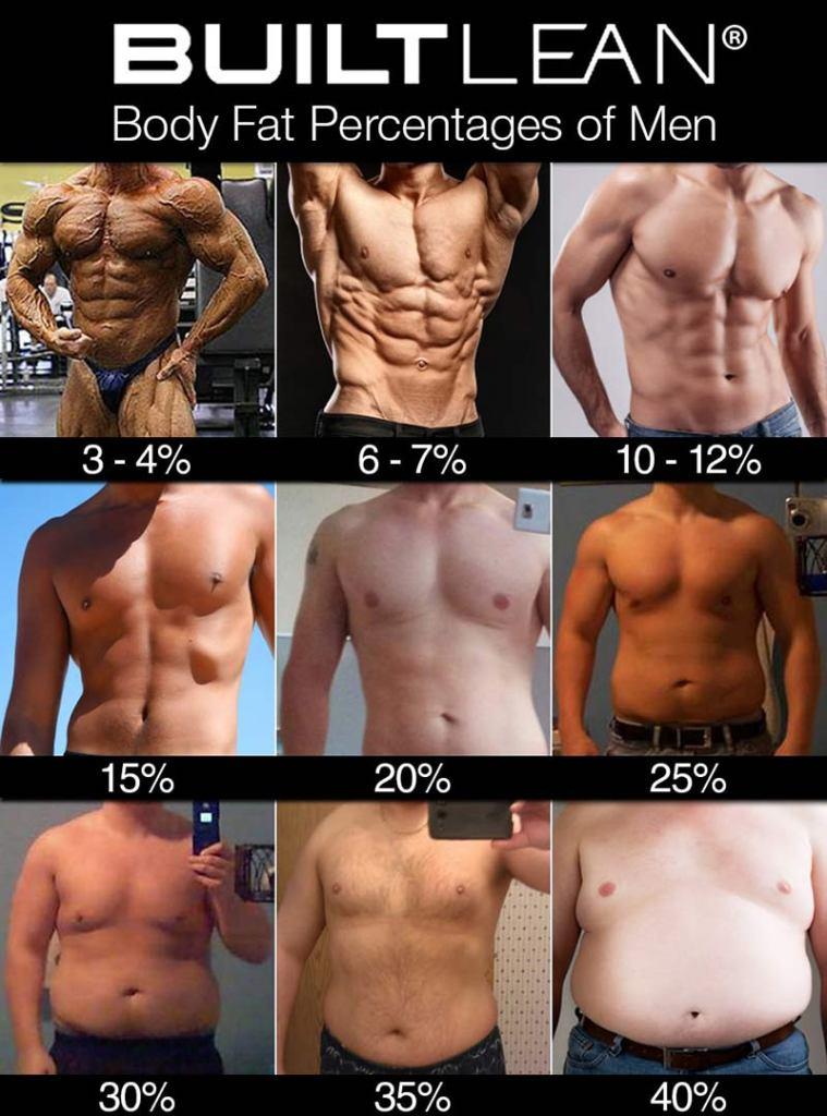 Male bodyfat percentage chart
